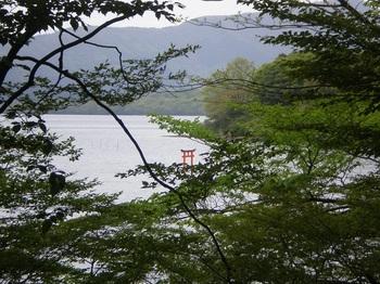 箱根神社10九頭竜神社1.JPG