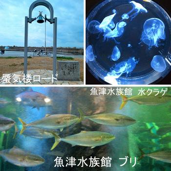 魚津水族館.jpg