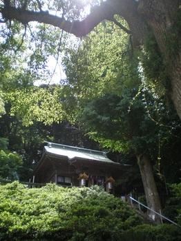 hasirimizu1.JPG