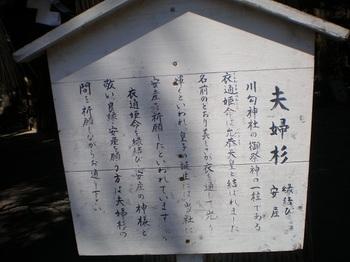 kawawa6.JPG